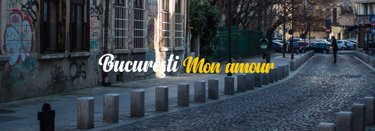 Domenii, mon amour, Corina Ozon - Bucuresti Centenar
