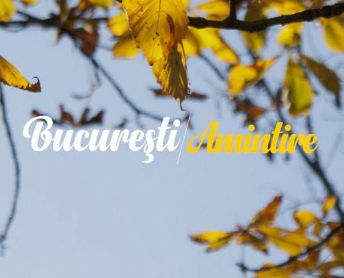 Veronica Soare - Bucuresti Centenar