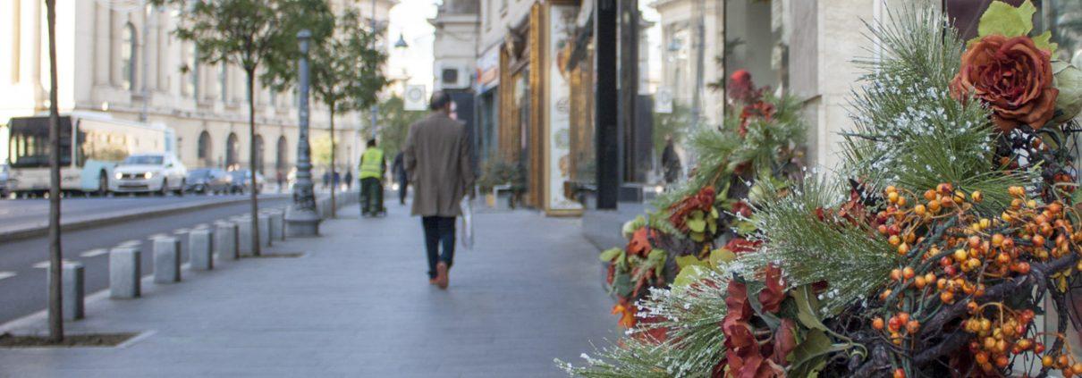 Cel mai fidel client al cafenelelor de pe Calea Victoriei - Bucuresti Centenar