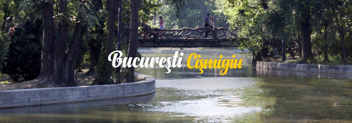 Cristina Negraru - Bucuresti Centenar