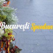 Cristina Dobrescu - Bucuresti Centenar