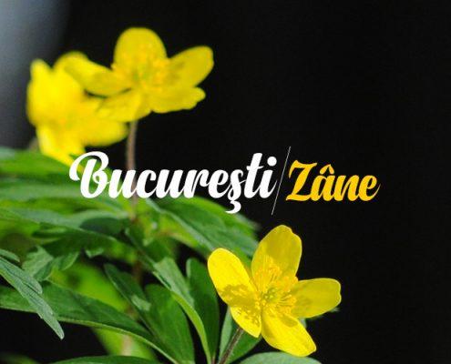 Maria Coman - Bucuresti Centenar