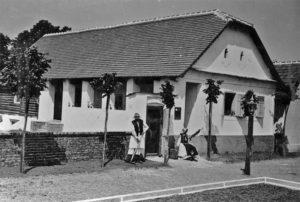Muzeul Satului - bucuresti centenar